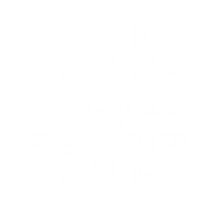 app-develop-by-citrusbits